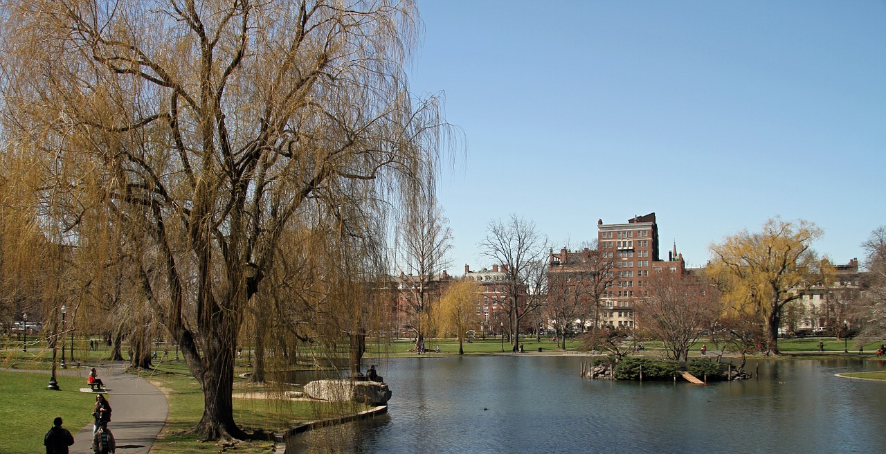 You can also explore Boston's Public Parks